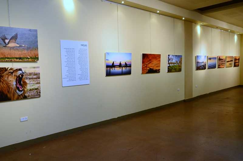 gallery_studio